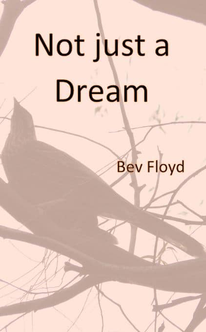 Not Just a Dream - book cover